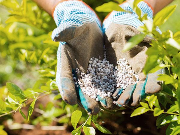 fertilizzante_naturale